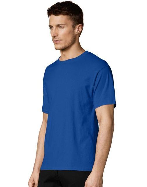 2 ComfortBlend Crewneck T-Shirts
